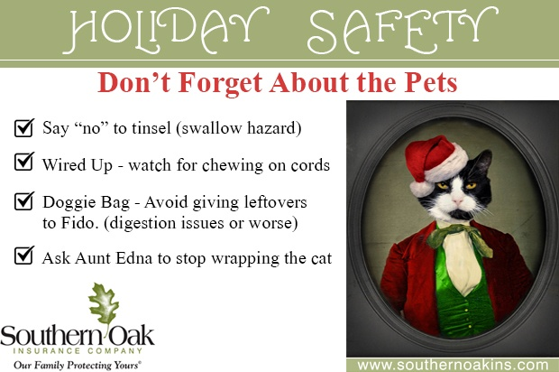 What About The Dog 10 Pet Safety Tips For Holidays